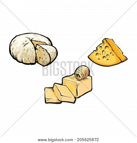 Vector sketch cartoon piece of porous cheese with holes, butter bar with slices, soft brie cheese set. Isolated illustration on a white background. Healthy food dairy products, natural dieting concept