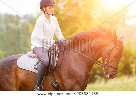 Young rider woman galloping on bay horse at sunny meadow. Rider girl in white shirt and helmet riding dark bay stallion