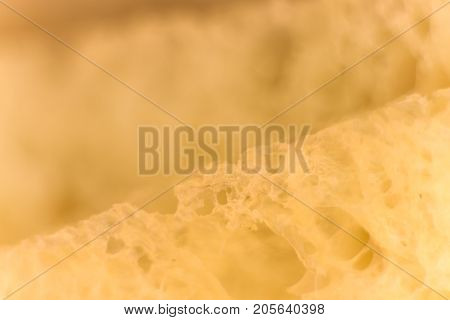 Pulp Of Bread Macro Closeup. Texture Background. Slice Section. Corner.