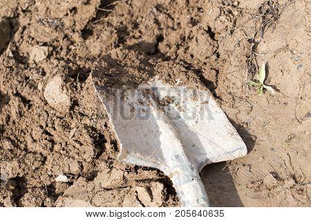 Shovel in the soil . In the park in nature