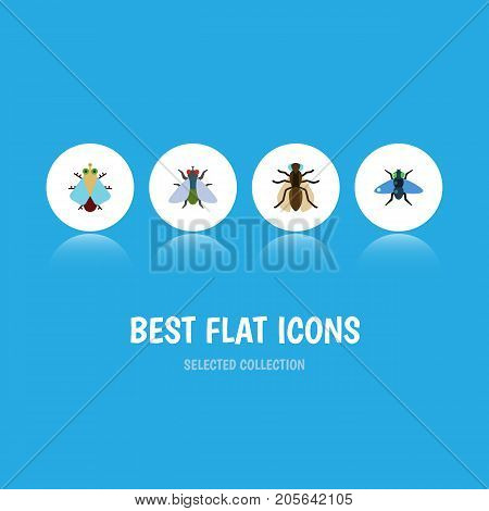 Flat Icon Buzz Set Of Mosquito, Fly, Dung And Other Vector Objects