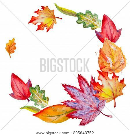 Circle composition with bright hand drawn watercolor orange, yellow, green, red and vinous leaves, isolated on the square white background