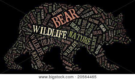 Wordcloud of bear