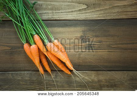 Fresh organic carrots with green tops on wooden table closeup. Copy space. Top view.
