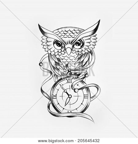 Sketch of a wise owl with a clock on a white background.