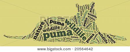 Wordcloud of puma