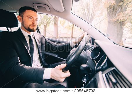 Handsome Bearded Businessman Driving A Car On The Road