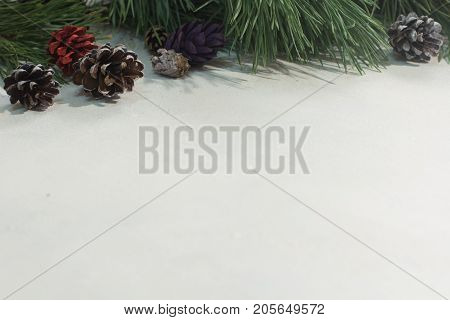 Winter background of festive decoration. Close up of pine branch with colorful strobilas on white backdrop, free space. Christmas greeting, celebration and New Year holiday decor concept
