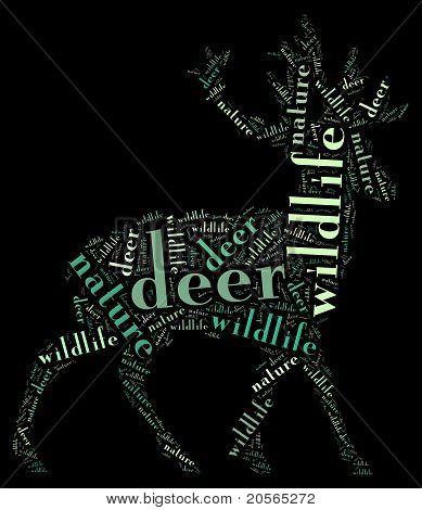 Wordcloud of deer