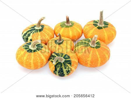Group Of Seven Small Disc-shaped Ornamental Gourds