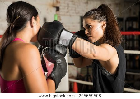 Woman Punching Opponent In The Jaw