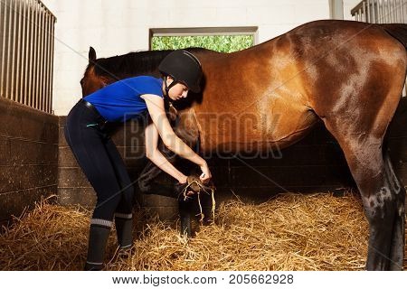 Portrait of young woman in jokey uniform cleaning horse's hoof inside the box stall