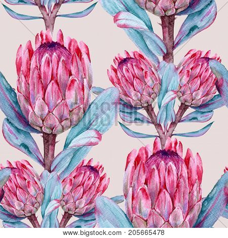 Background of flowers protea. Seamless pattern. Watercolor illustration.