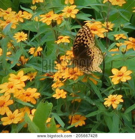 A digitally enhanced photo of a brown butterfly perched on a bed of yellow blossoms