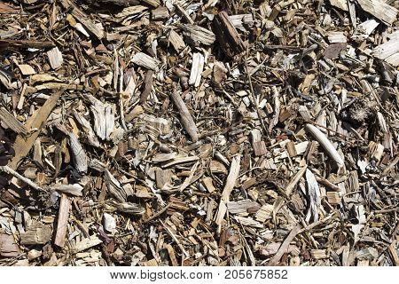 Abstract Textures And Backgrounds: Bark Ground Cover / Mulch