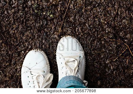 Women's legs in white sneakers stand in the mud. Autumn mud.