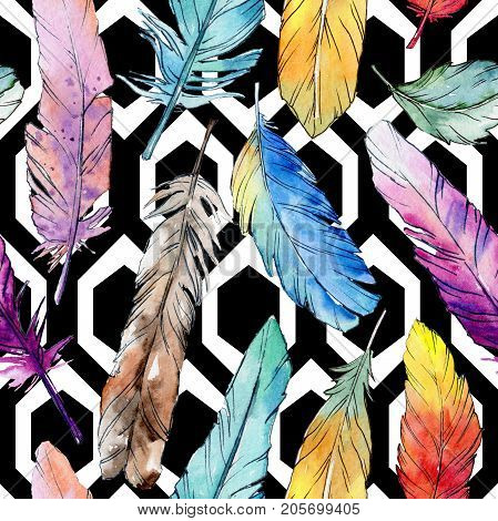 Watercolor bird feather pattern from wing. Aquarelle feather for background, texture, wrapper pattern, frame or border. poster