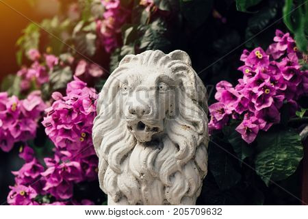 Small concrete sculpture of lion among flowers home front yard decoration element