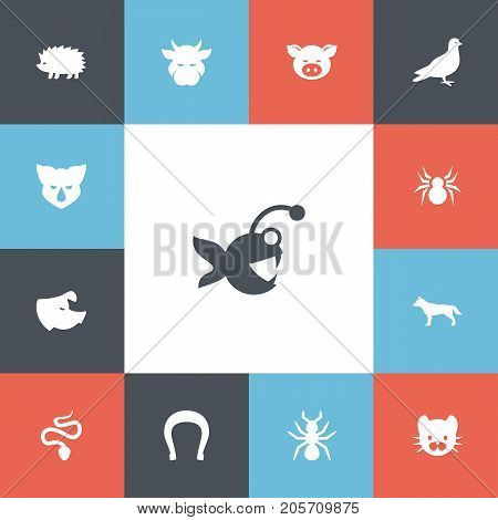 Set Of 13 Editable Zoology Icons. Includes Symbols Such As Kine, Sow, Rhinoceros And More