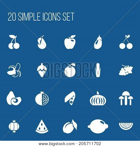 Set Of 20 Editable Berry Icons. Includes Symbols Such As Grapevine, Apricot, Banana And More