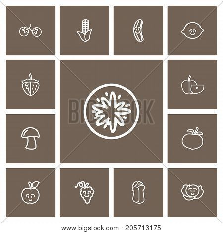 Set Of 13 Editable Cookware Outline Icons. Includes Symbols Such As Zucchini, Turnip, Berry And More