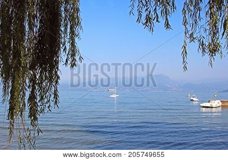 Lake Garda Italy near Peschiera with some boats framed by branches of a weeping willow