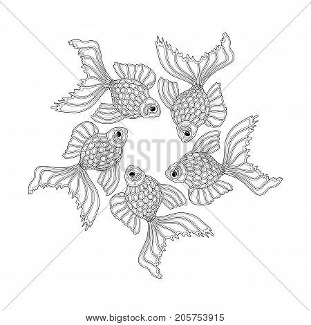 Vector hand drawn goldfishes floating in a circle. Line art design goldfish