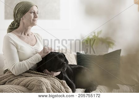 Grandmother And Dog On Sofa