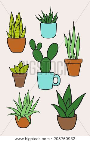 Set vector of houseplants in pots. Hand drawn cartoon collection of house plants. Vector illustration