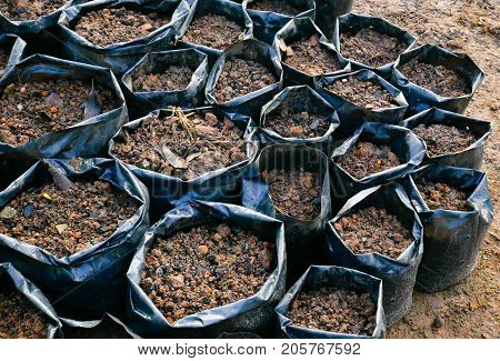 Soil texture. The soil bag color black for planting seed in it have loamy soil sand husk dry leaf and stone for planting trees. this image for agriculture concept.