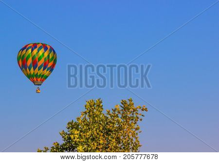 Hot Air Balloon In Early Morning Above Treeline