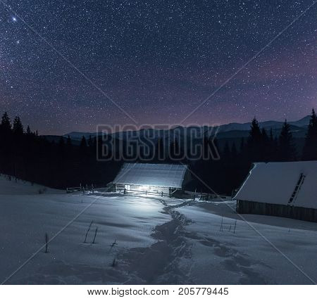 Wooden Cabins Under Stars. Lights Shines Through Wooden Planks From Inside Of The House. Night Lands