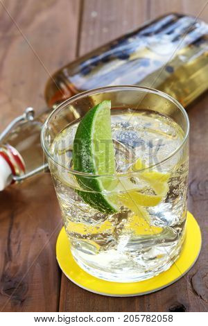 homemade infusion gin and tonic