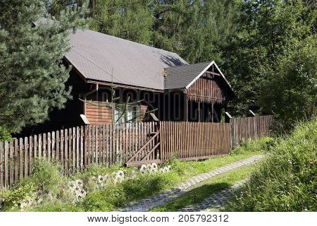 Old wooden house in forest.