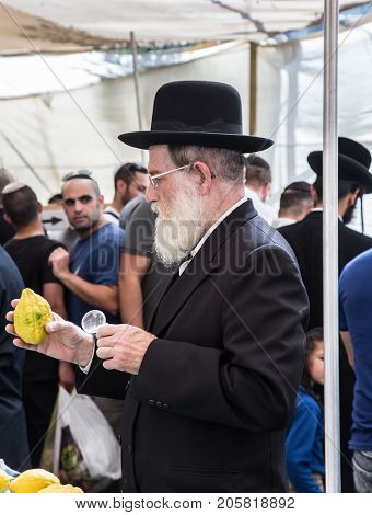 JERUSALEM, ISRAEL - OKTOBER 16, 2016: Traditional market before the holiday of Sukkot. Elderly ortodox Jew with white beard is checking with lupa ritual plant etrog - citrus
