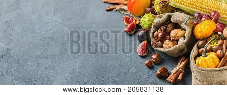 Fall autumn harvest thanksgiving holiday concept. Pumpkin apple chestnut corn nuts grapes ripe fruit and vegetables on a black table. Copy space background