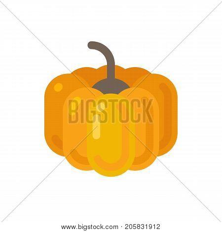Pumpkin flat icon. Autumn harvest and Halloween flat illustration