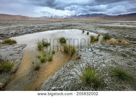 Tso Kar salt lake in the southern part of Ladakh, Kashmir, India