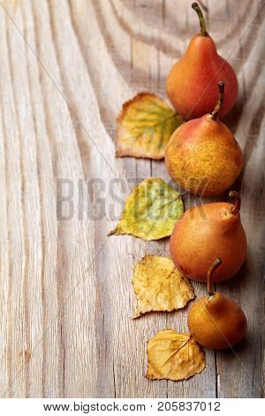 Pears. Pears Harvest. Fresh Organic Pears On Wooden Table. Pear Autumn Harvest. Autumn Nature Concep