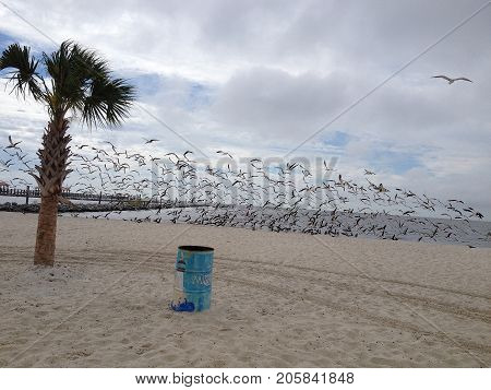 Perfect Beach landscape of gulf shore in Mississippi