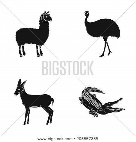lama, ostrich emu, young antelope, animal crocodile. Wild animal, bird, reptile set collection icons in black style vector symbol stock illustration .