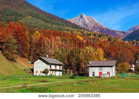Rural houses on green lawn as colorful autumnal trees and mountains on background under blue sky in Switzerland.
