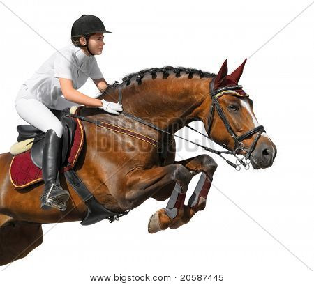 Equestrian: show jumping - isolated on white poster