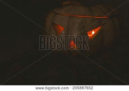 Close up of white jack o lantern glowing in darkroom during Halloween