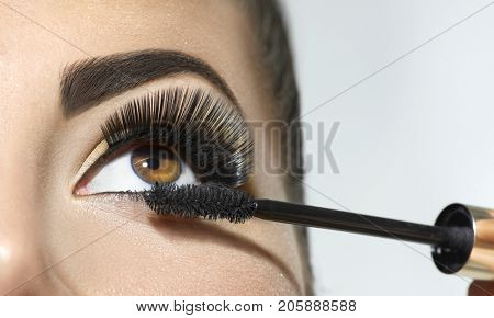 Mascara Applying. Long Lashes closeup. Mascara Brush. Eyelashes extensions. Makeup for Brown Eyes. Eye Make up Apply, Eyebrows shaping. Beautiful woman eyes make-up