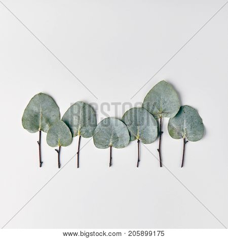 Nature Minimal Concept - Winter Forest Treeline made of green leaves on white background. Flat Lay