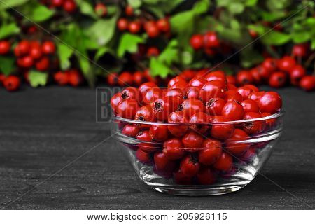 Hawthorn berries (crataegus) in glass bowl on a old black wooden table (selective focus).