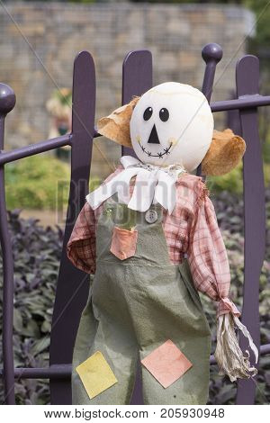Bald Scarecrow, Kitchen Garden, Adelaide Botanic Garden