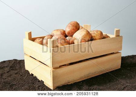 Wooden crate with young potatoes on ground against light background