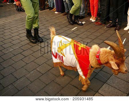 Alora Spain - April 6 2012: Spanish Foreign Legion mascot Ram draped with regimental flag